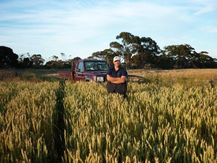 Бизнес-план фермерских хозяйств