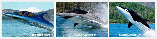Подводная лодка для частного пользования
