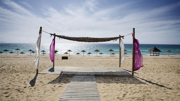 Бизнес на пляже от А до Я